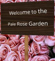Welcome to the Pale Rose Garden
